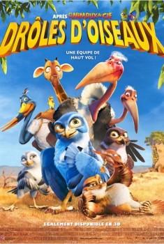 Drôles D'oiseaux (2011)