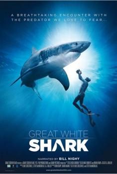 Requins blancs 3D (2015)