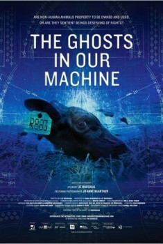 The Ghosts in our Machine (2013)