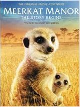 Le Clan des suricates, l'aventure commence (2012)