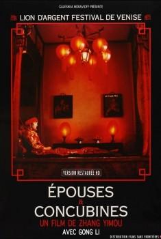 Epouses & concubines (1991)